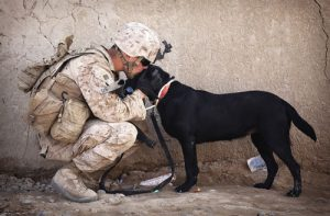 Military Service-member with his dog