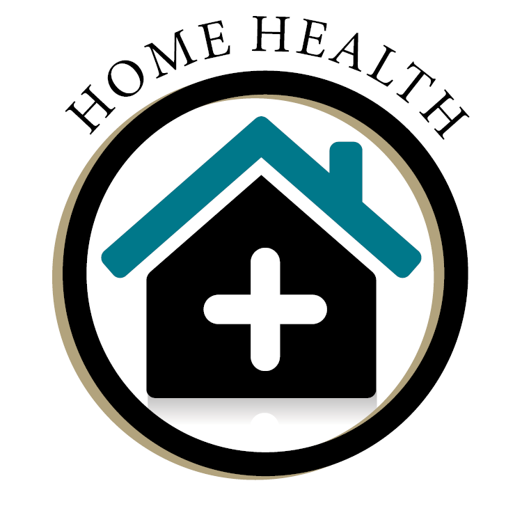 Home Health Icon