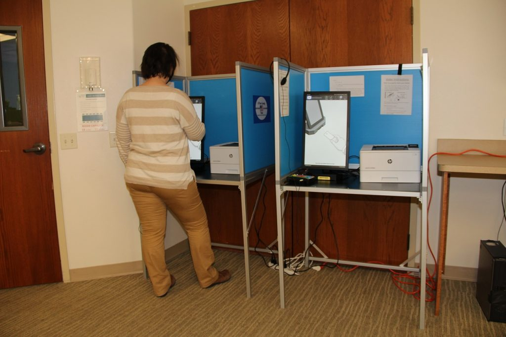 Image of woman at voting machine